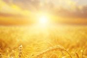 Crosslux : 635 000 euros pour développer des vitrages photovoltaïques