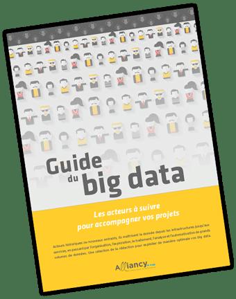 Couverture Guide Big Data