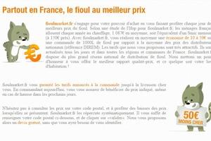 fioulmarket-énergie-total-article