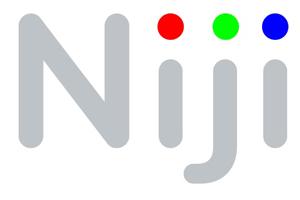 Niji prévoit 15 recrutements à Lyon en 2017