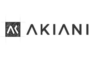 akiani-conseil-facteurs-humains-UX-logo-article
