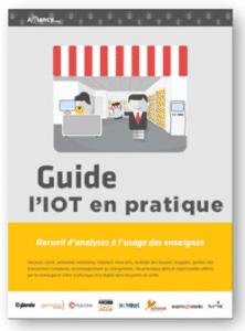 guide l'IOT en pratique
