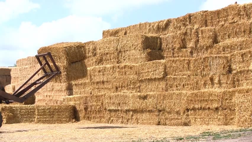 Biosco propose des logiciels pour optimiser la logistique des agriculteurs.