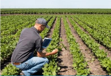 Agriculture : des hommes et des champs connectés
