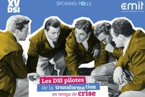 DSI-Pilotes-transformation-crise
