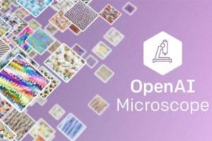 Microscope,-un-outil-au-service-de-l'interprétabilité-de-l'IA