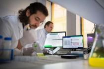Une équipe de recherche mixte entre l'Institut Pasteur et Inria développe un cadre méthodologique permettant d'assister le processus de découverte pour la biologie des systèmes et la biologie de synthèse. © Inria / Photo C. Morel