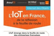 évolution de l'IoT dans les entreprises françaises