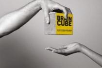 La société Braincube est nominée aux Trophées des entreprises du Puy-de-Dôme, dans la catégorie «Innovation».